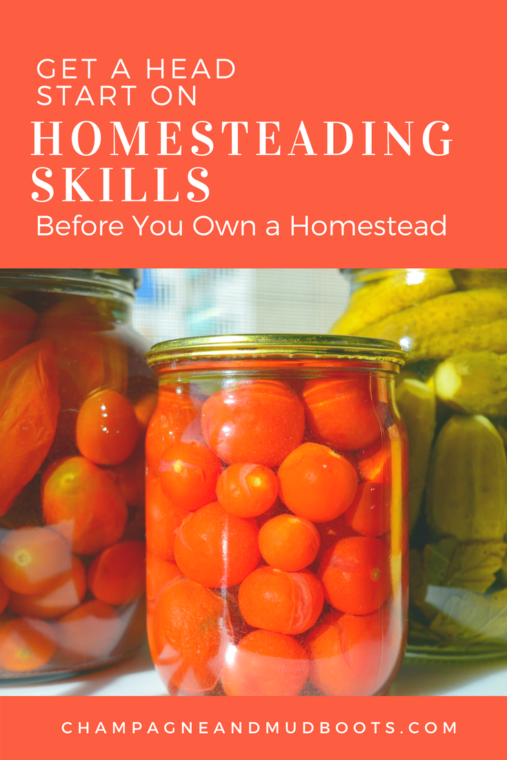 Homesteading skills to learn and practice before you even start your homestead. Ideas for food preservation, skills to help with DIY projects, and homestead management that will allow you to jump right into homesteading once you have a property.