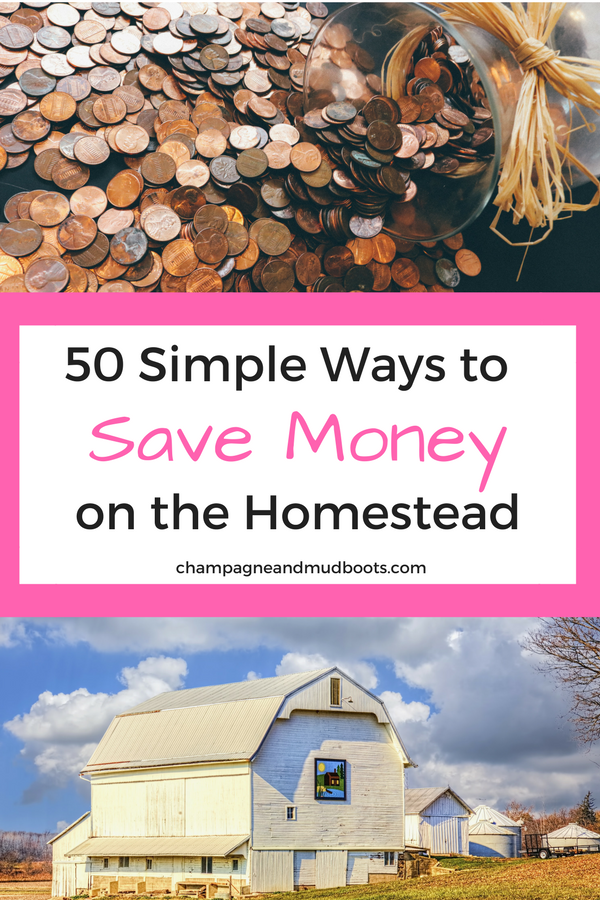 Simple and easy ways to save money on a homestead so you can create the homestead of your dreams without going broke in the process.