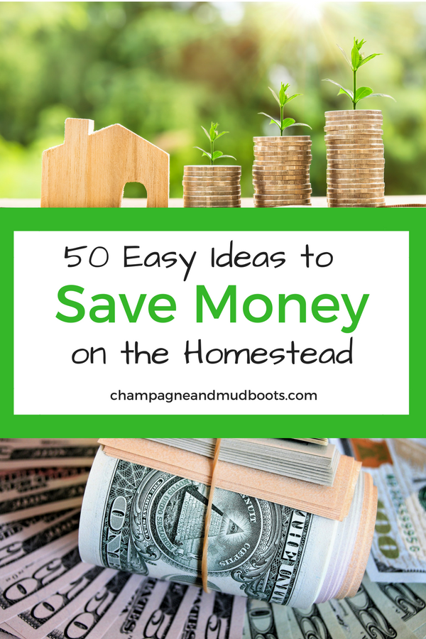 Homesteading can be expensive but these simple and easy ways to save money on a homestead can help you create the homestead of your dreams without going broke in the process.