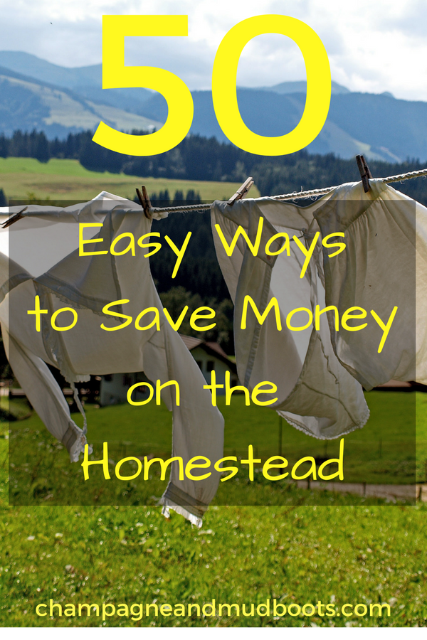 Tips to save money on a homestead and stretch your dollars while homesteading.
