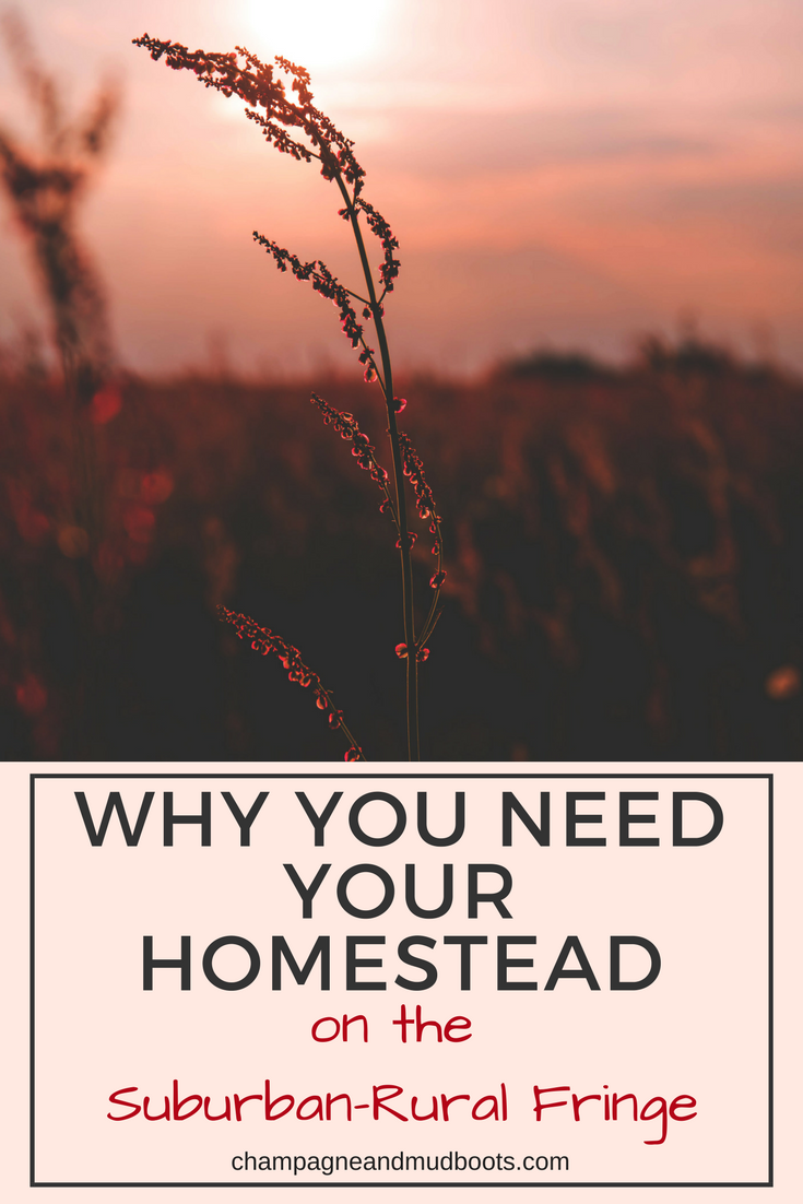 Reasons and benefits to establishing your homestead in the suburban rural fringe which combines the ideals of both urban and country living.