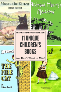 A guide providing descriptions of unique children's books, that you may not have heard of, that will delight and entertain both adults and children.