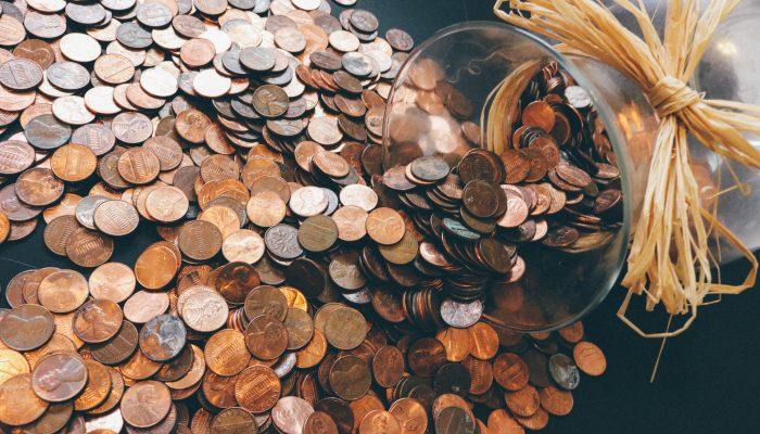 Save Money on a Homestead